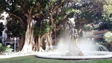 Estatua La Aguadora y ficus. Plaza de Gabriel Miró (Alicante)